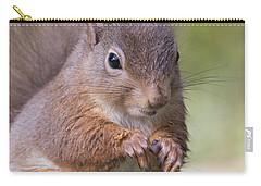 Red Squirrel - Scottish Highlands #1 Carry-all Pouch