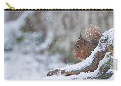 Red Squirrel On Snowy Stump Carry-all Pouch