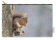 Red Squirrel On Tree Fungus Carry-all Pouch