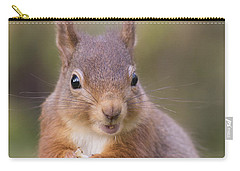 Red Squirrel - Scottish Highlands #18 Carry-all Pouch