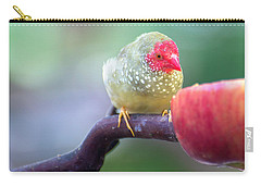Red Star Finch Carry-all Pouch
