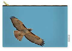 Red Tail Carry-all Pouch