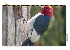Carry-all Pouch featuring the photograph Red-headed Woodpecker 2018  by Ricky L Jones