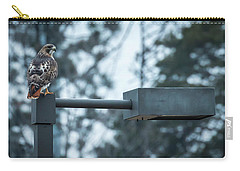 Carry-all Pouch featuring the photograph Red Tailed Hawk At Parkside by Ricky L Jones