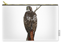 Red-tailed Hawk - Color Carry-all Pouch
