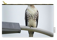 Carry-all Pouch featuring the photograph Red-tailed Hawk Looking At Me by Ricky L Jones