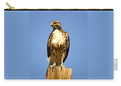 Red-tailed Hawk On Post Carry-all Pouch