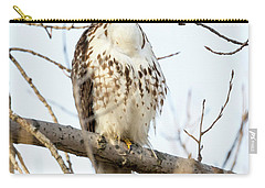 Red-tailed Hawk With Full Crop Carry-all Pouch by Ricky L Jones