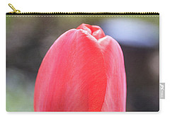 Carry-all Pouch featuring the photograph Red Tulip Square by Edward Fielding