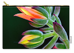 Red Velvet Carry-all Pouch by Deb Halloran