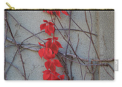 Carry-all Pouch featuring the photograph Red Vines by David Chandler
