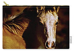 Red Willow Pony Lx Carry-all Pouch