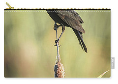 Red-wing On Cattail Carry-all Pouch by Robert Frederick