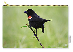 Red Winged Blackbird Carry-all Pouch by Alyce Taylor