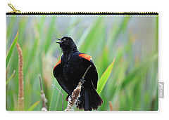 Red-winged Blackbird At Miner's Marsh, Nova Scotia Carry-all Pouch