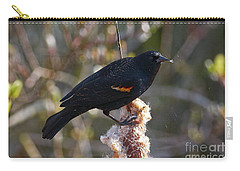 Carry-all Pouch featuring the photograph Red-winged Blackbird On Cattail Reed by Sharon Talson