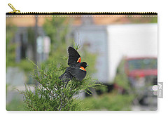 Red-winged Blackbird Carry-all Pouch by Robert Banach