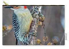 Carry-all Pouch featuring the photograph Redbellied Woodpecker by Skip Tribby