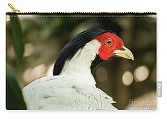 Redheaded Bird Portrait. Carry-all Pouch