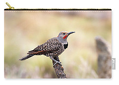 Redshafted Northern Flicker Carry-all Pouch