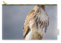 Redtail Portrait Carry-all Pouch by Bill Wakeley