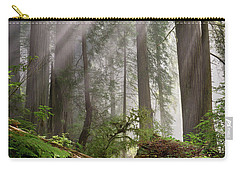 Redwood Light Carry-all Pouch