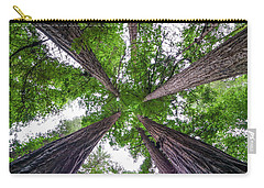 Redwood Tree Carry-all Pouch by Henri Irizarri