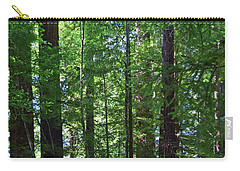 Redwoods No. 3-1 Carry-all Pouch