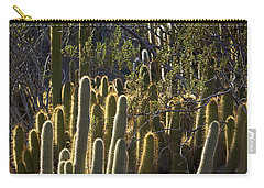 Carry-all Pouch featuring the photograph Reflecting The Sunshine by Phyllis Denton