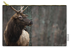 Carry-all Pouch featuring the photograph Regal by Andrea Silies
