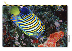 Regal Angelfish, Great Barrier Reef Carry-all Pouch