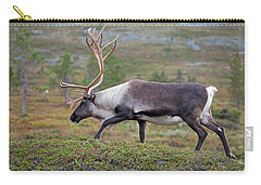 Reindeer Carry-all Pouch by Aivar Mikko