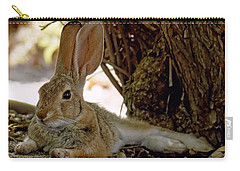 Relaxing Cottontail Carry-all Pouch