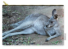 Carry-all Pouch featuring the photograph Relaxing Kangaroo by Miroslava Jurcik
