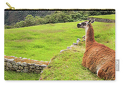 Relaxing Llama In Machu Picchu Carry-all Pouch