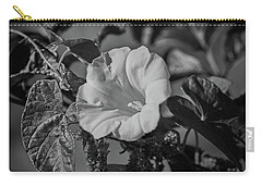 Remember Bw #f5 Carry-all Pouch by Leif Sohlman