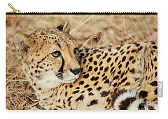 Resting Cheetah, Close-up  Carry-all Pouch by Nick Biemans