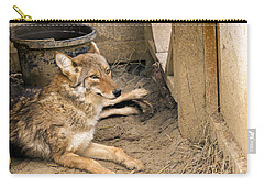 Resting Coyote Carry-all Pouch