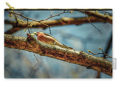 Resting #g3 Carry-all Pouch by Leif Sohlman