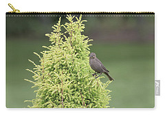 Carry-all Pouch featuring the photograph Resting In The Trees by Kim Hojnacki