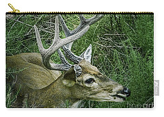 Carry-all Pouch featuring the photograph Resting Male Deer by Melissa Messick