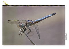 Resting My Wings Carry-all Pouch by Liz Masoner