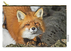 Carry-all Pouch featuring the photograph Reynard The Fox by Nina Stavlund