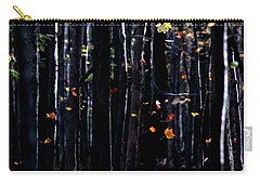 Rhythm Of Leaves Falling Carry-all Pouch by Bruce Patrick Smith