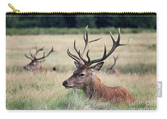 Richmond Park Stags Carry-all Pouch
