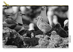 Carry-all Pouch featuring the photograph Ring-billed Gulls 2016-1 by Thomas Young