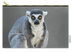 Ring-tailed Lemur #6 V2 Carry-all Pouch