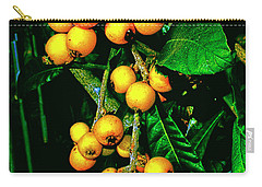 Ripe Loquats Carry-all Pouch