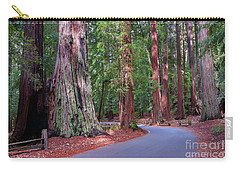 Road Through Redwood Grove Carry-all Pouch
