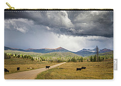 Road To Colorado  Carry-all Pouch